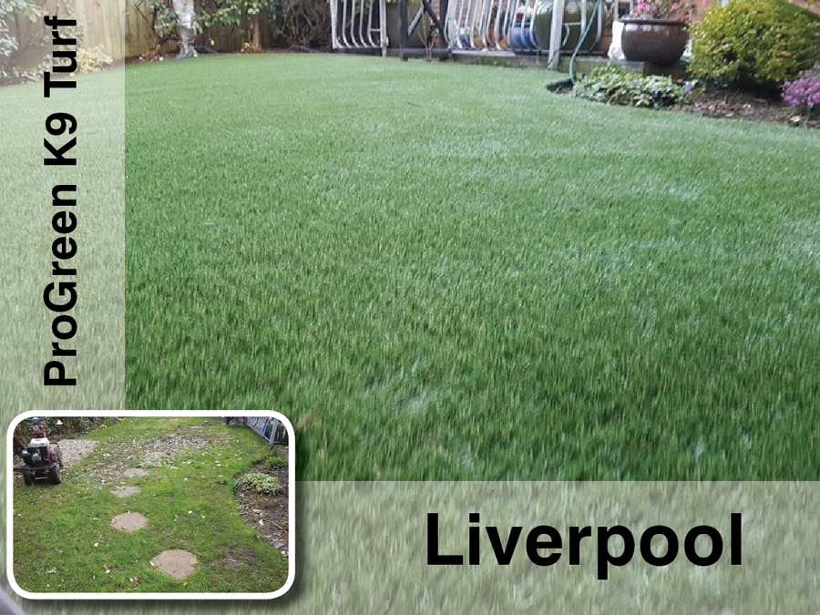Liverpool artificial grass