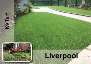 artificial grass in liverpool