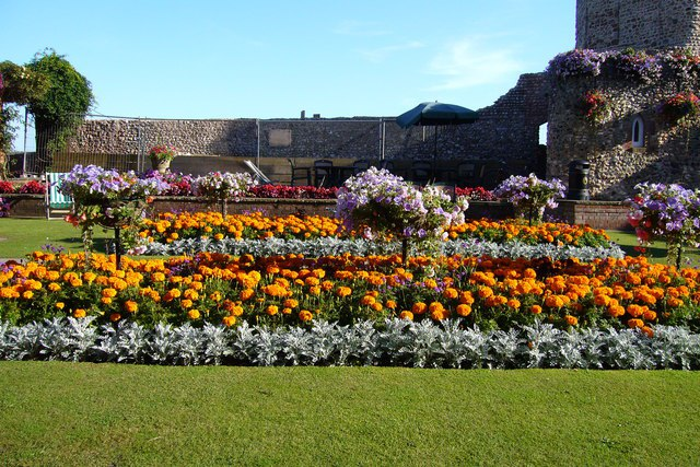 Blooms Garden Centre: Sidmouth In Bloom Wins The Garden Centre Competition