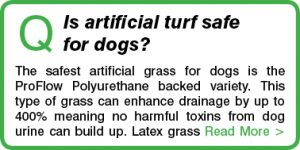 Is artificial turf safe for dogs